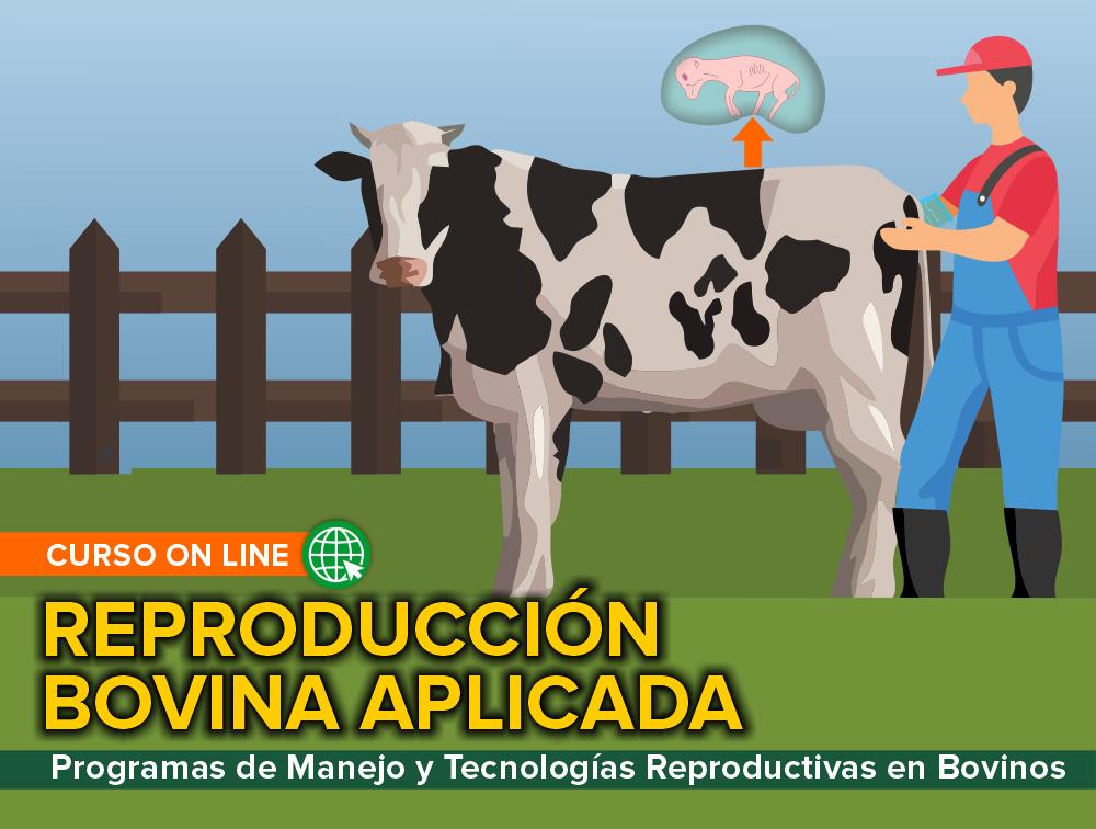 Curso On Line: Reproducción Bovina Aplicada – Programas de Manejo y Tecnologías Reproductivas en Bovinos
