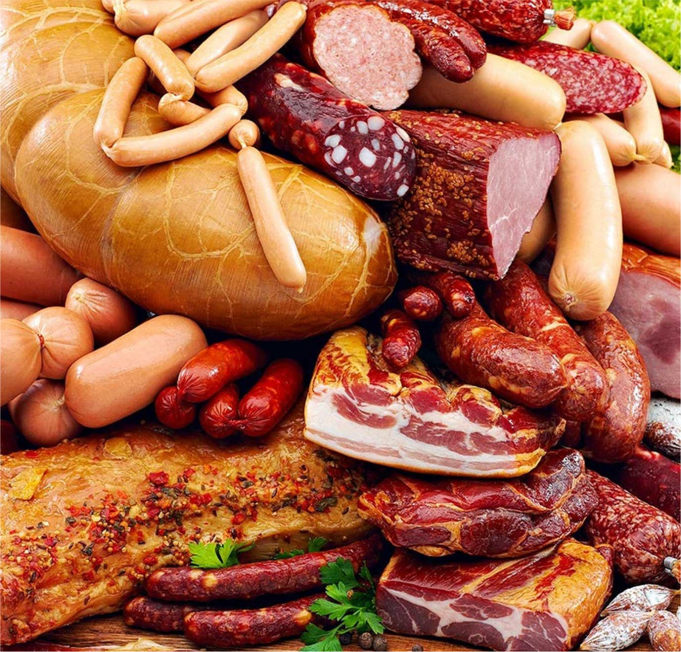Ind. Alimentaria – Agroindustria