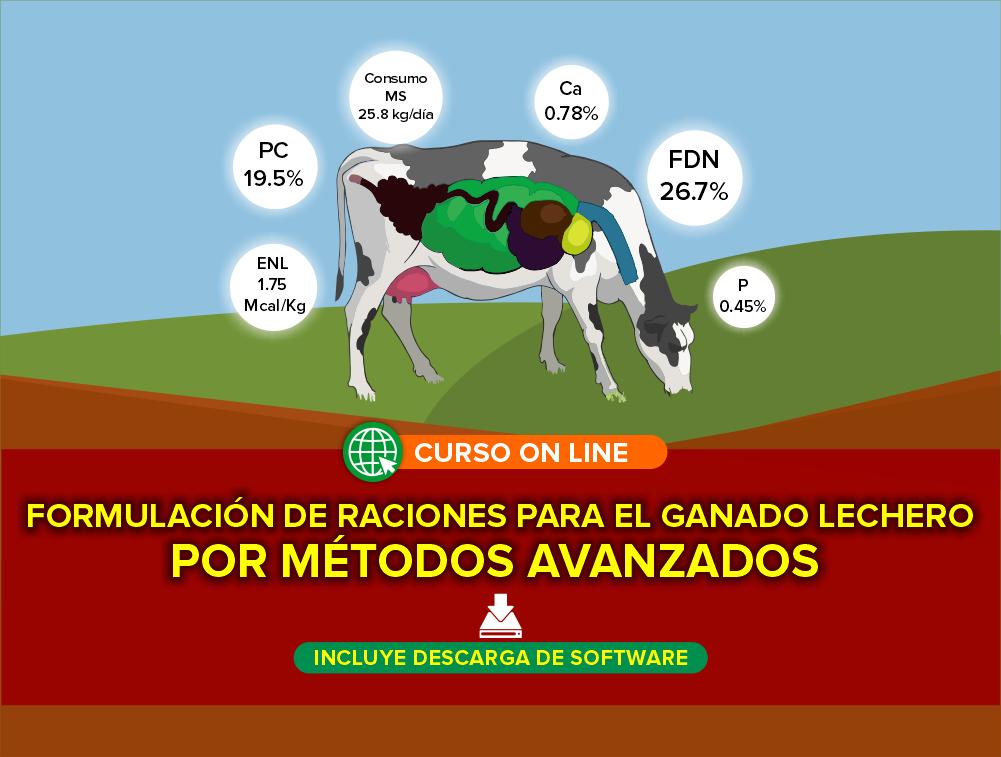Curso On Line: Formulación de Raciones para el Ganado Lechero por Métodos Avanzados