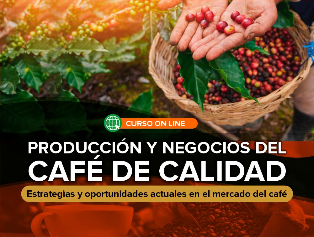 Curso On Line: Producción y Negocios del Café de Calidad