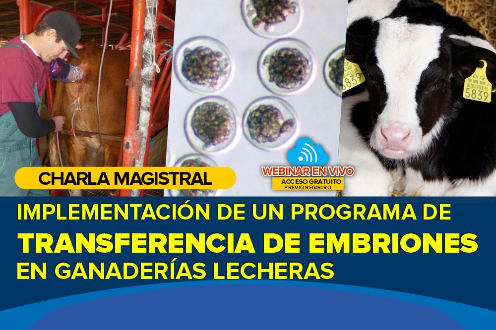 ¿Cómo Implementamos un Programa de Transferencia de Embriones en una Ganadería Lechera?