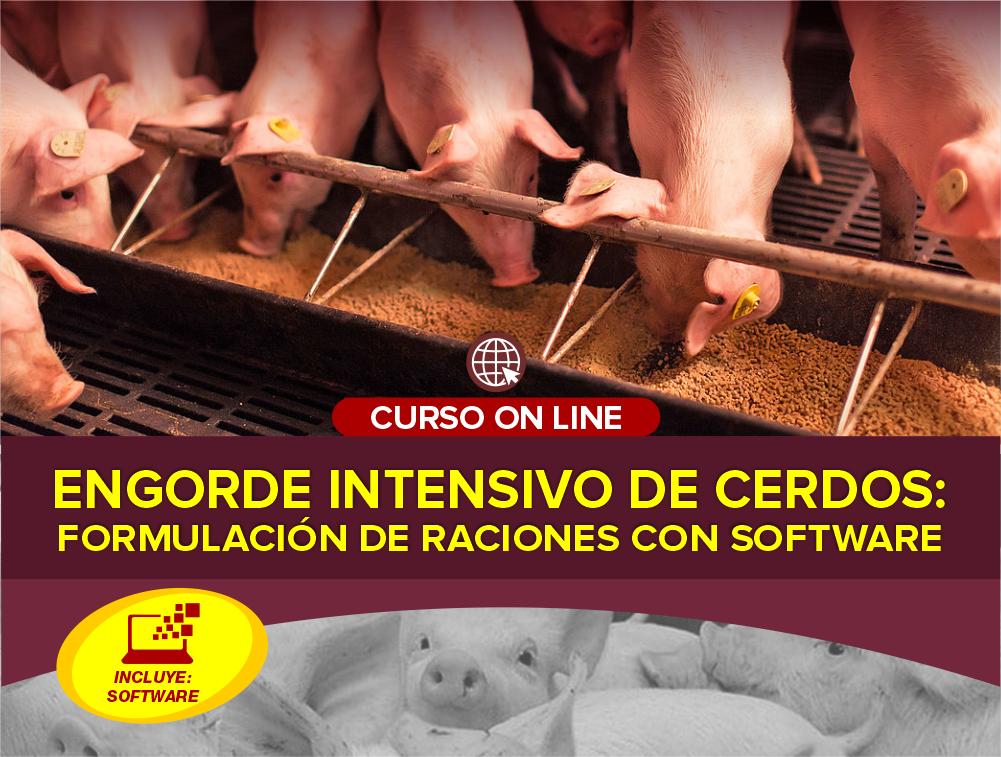 Curso On Line: Engorde Intensivo de Cerdos – Formulación de Raciones con Software