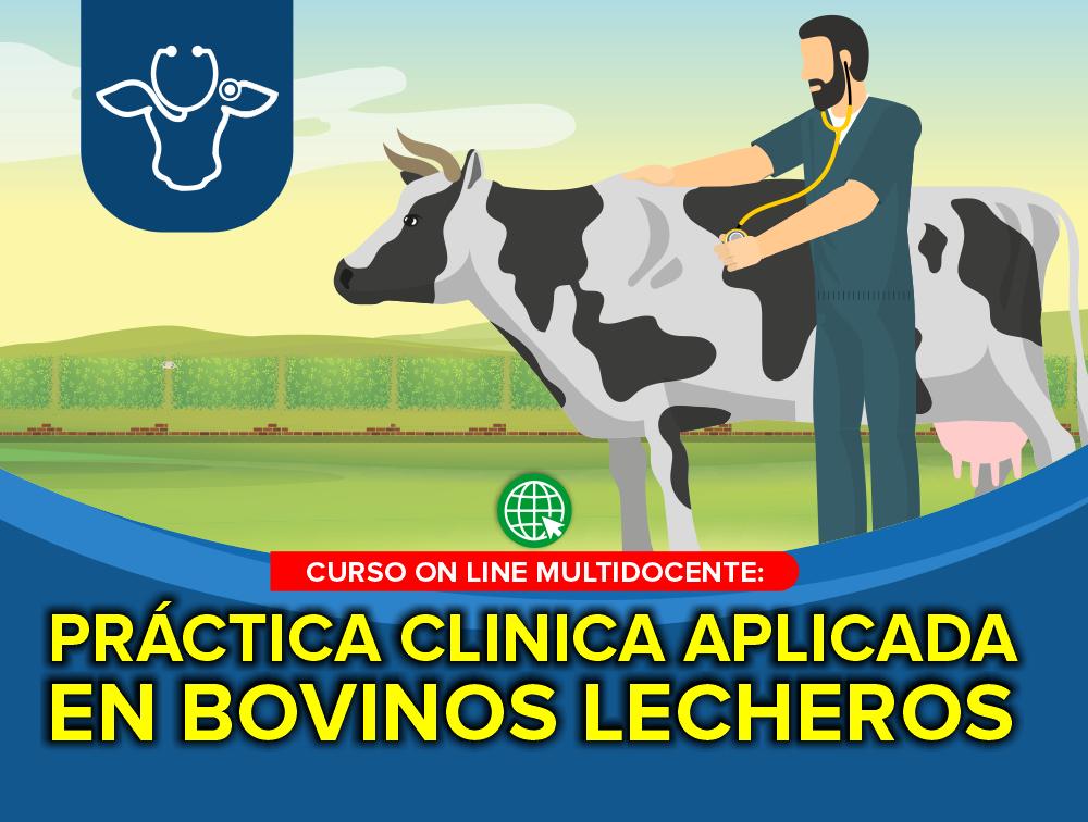 Curso On Line Multidocente: Práctica Clínica Aplicada en Bovinos Lecheros