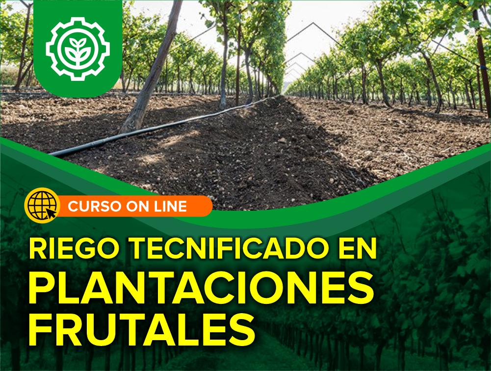Curso On Line: Riego Tecnificado en Plantaciones Frutales