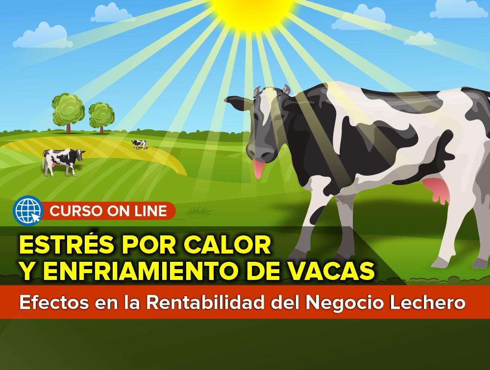 Curso On Line: Estrés por Calor y Enfriamiento de Vacas