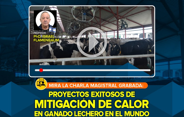 Proyectos Exitosos de Mitigación de Calor en Ganado Lechero en el Mundo