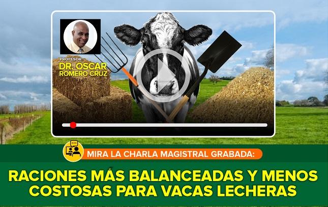 Raciones más Balanceadas y Menos Costosas para Vacas Lecheras